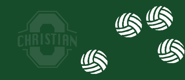 2015 OC Summer Co-Ed Adult Volleyball League